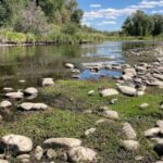 Prized trout streams shrink as heat, drought grip US West