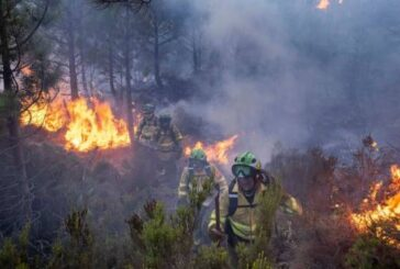 Crews in southern Spain face 'complex' wildfire for 5th day